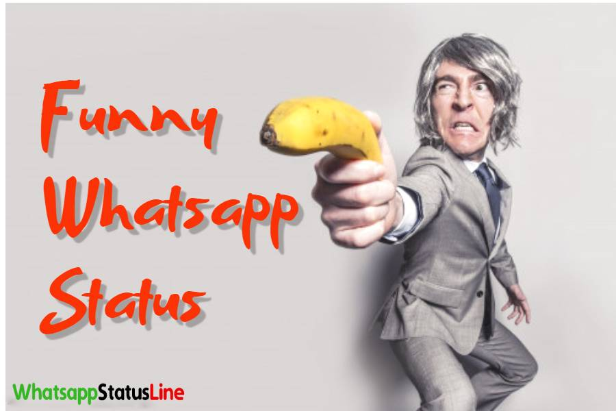 Funny Status Video Funny Whatsapp Status Video