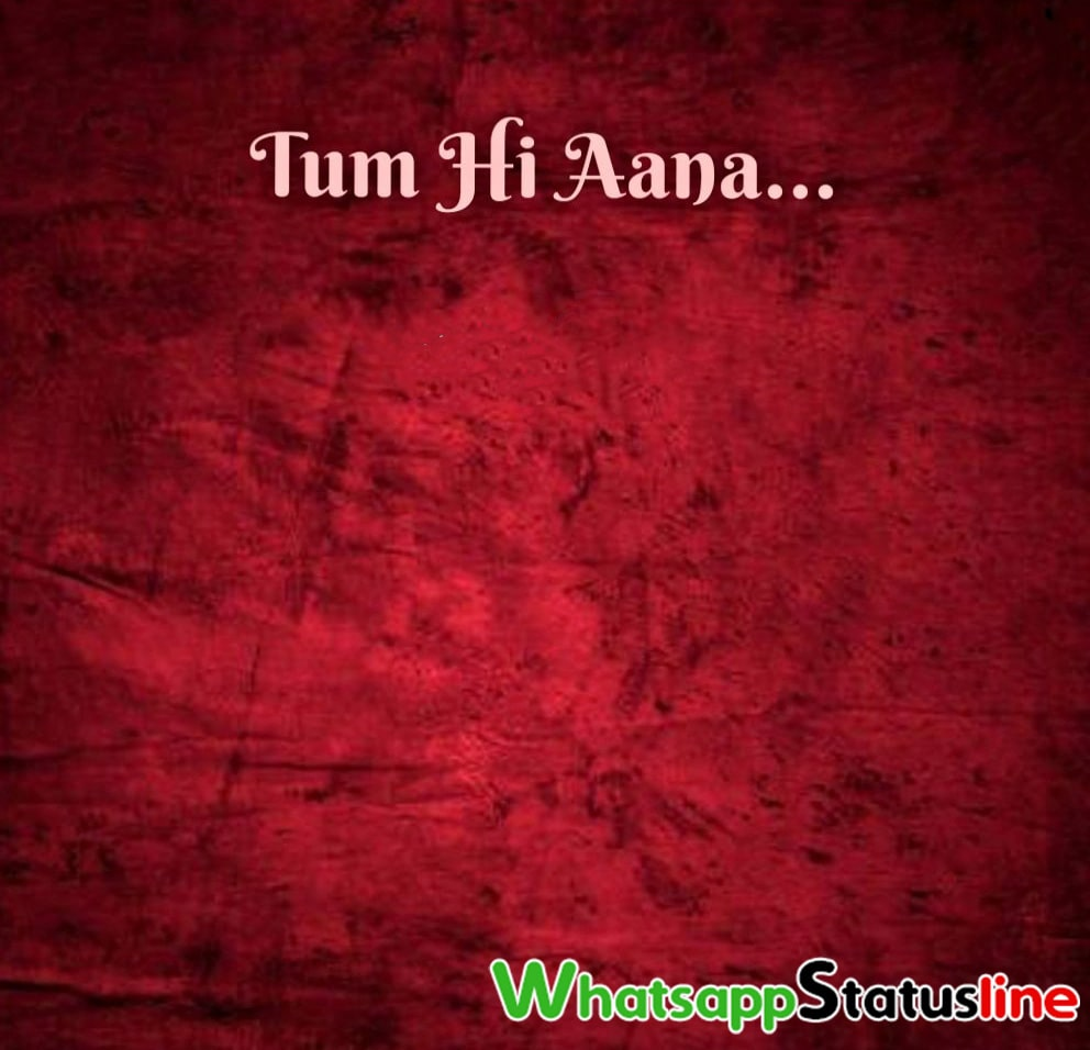 Tum Hi Aana Marjaavaan Jubin Nautiyal Status Video
