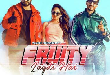 Fruity Lagdi Hai Song Mr Faisu Jannat Zubair Status Video