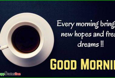 Good Morning Whatsapp Status Video Download