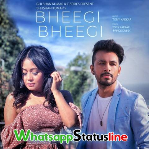 Bheegi Bheegi Song Neha Kakkar Tony Kakkar Status Video