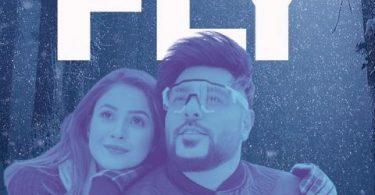 Fly Song Badshah Status Video