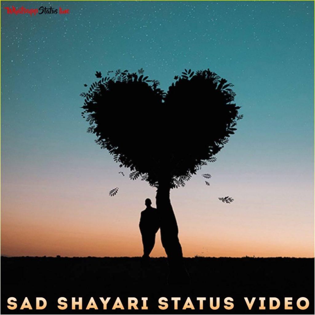 Sad Shayari Status Video