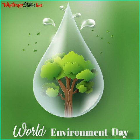 World Environment Day 2021 Status Video